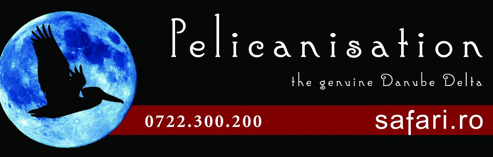 Pelicanisation