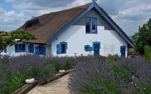 Casa Atticum